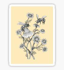 Bienen und Kamille auf Honig Hintergrund Sticker