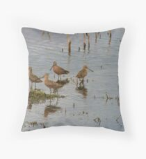 shorebirds... Throw Pillow