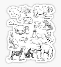 Mammal Chart | Animals Natural History Nature  Sticker