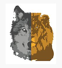 The Wolf and the Lion Photographic Print