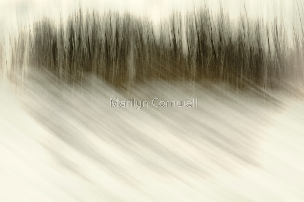Northern Exposures - I by Marilyn Cornwell
