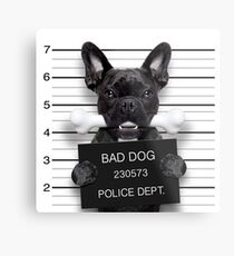 Funny French Bulldog Mugshot T-Shirt Metal Print