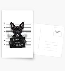 Funny French Bulldog Mugshot  Postcards