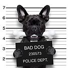 Funny French Bulldog Mugshot T-Shirt by wantneedlove