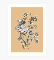 bees and chamomile on caramel background Art Print