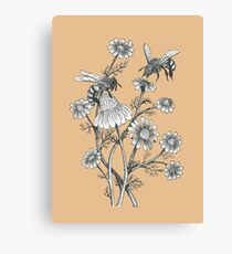 bees and chamomile on caramel background Canvas Print