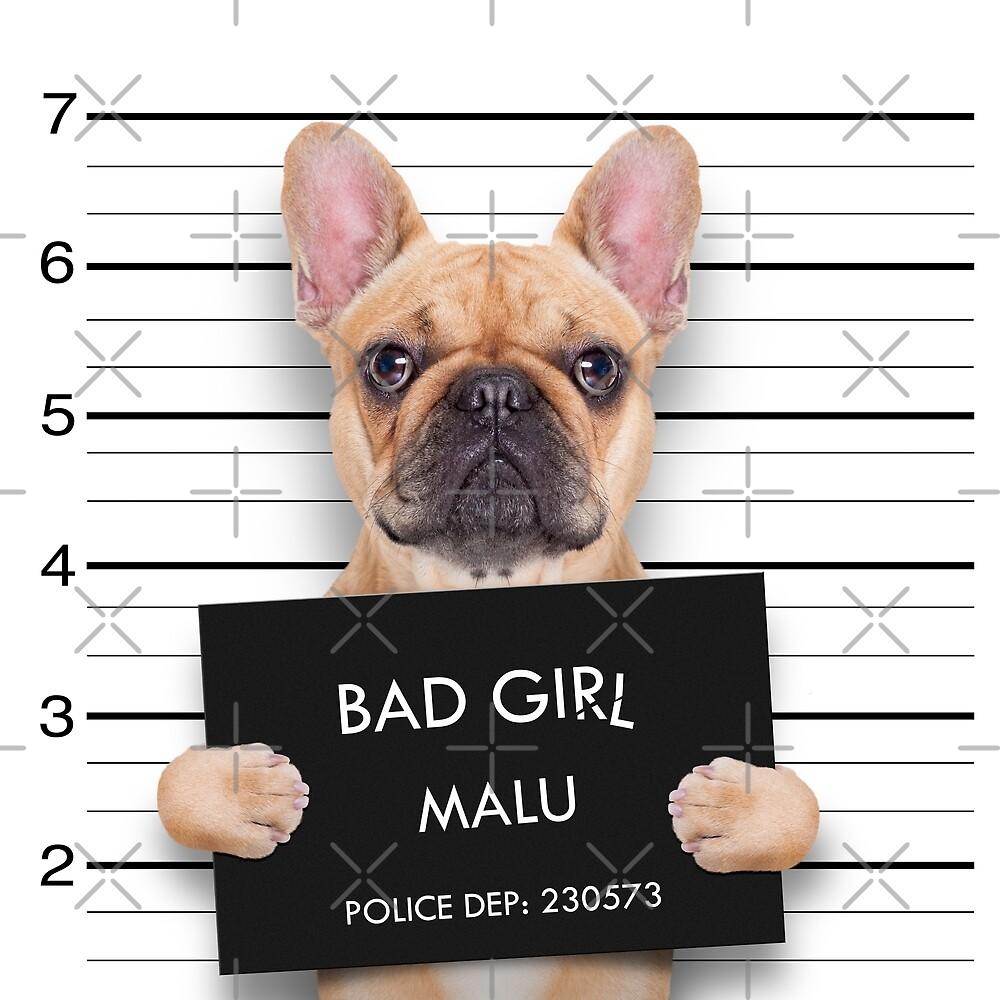 Funny Bulldog Mugshot by wantneedlove
