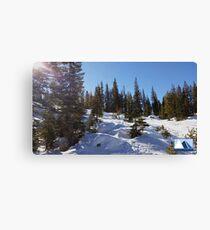 Snowy Scene 1 Canvas Print