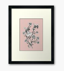 bees and chamomile on dusty pink background Framed Print