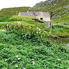 Hebridean Farm, Western Isles, Scotland von BlueMoonRose