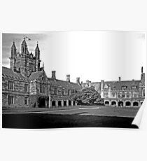 Sydney University Quadrangle Poster