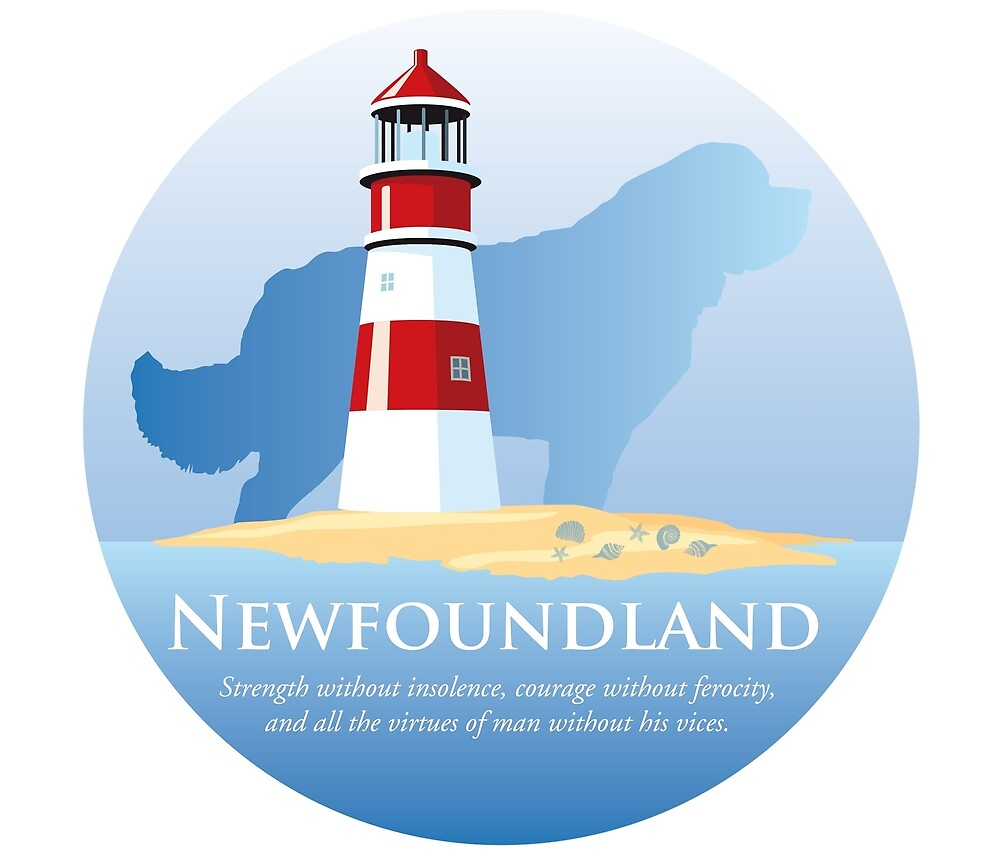 Newfoundland Dog by the Lighthouse by Christine Mullis