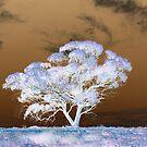 tree2 by vampibunni