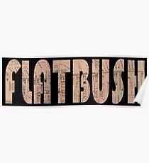 Póster Flatbush 1873
