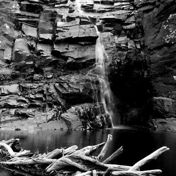 Sheok Falls by colm