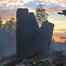 Responsible Logging? by Travis Easton