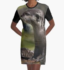 Otter Emerging From The Water Graphic T-Shirt Dress