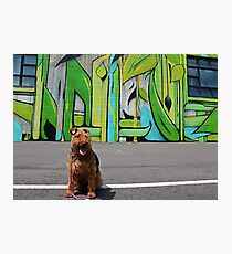 Welsh Terrier and Nashville Mural Photographic Print