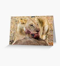 Africa - Lick from a lioness Greeting Card