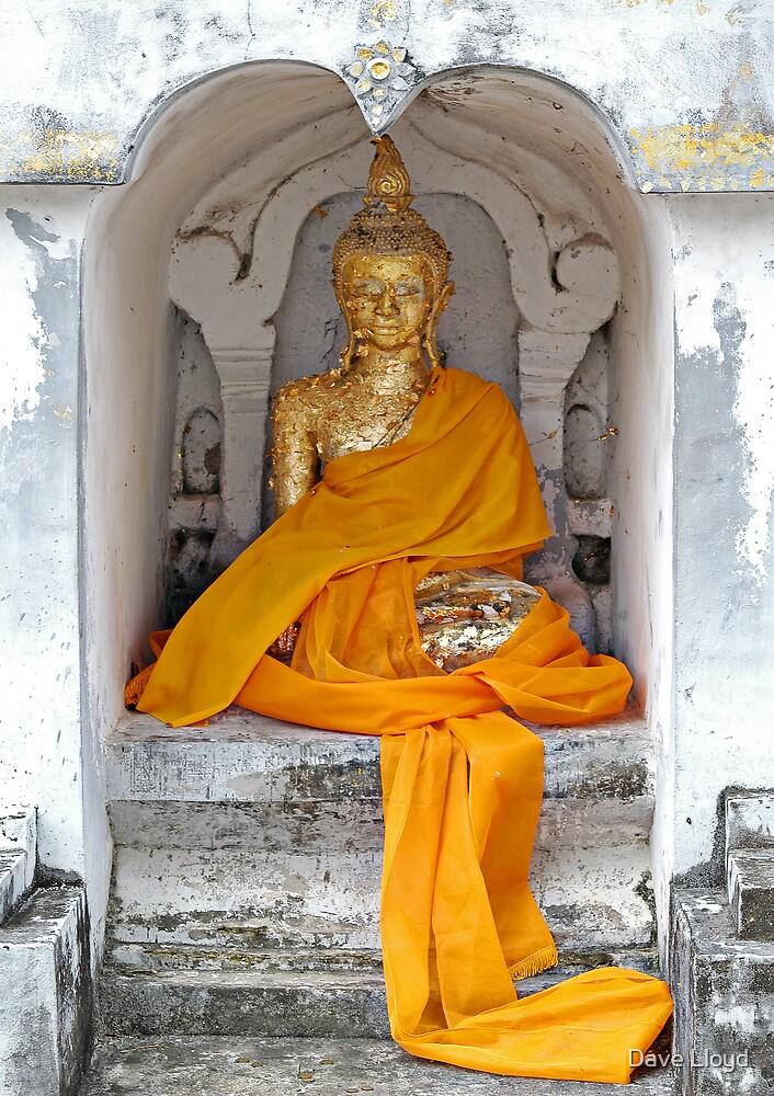 Buddha And Robe by Dave Lloyd