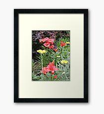 Fire & Sunshine Framed Print