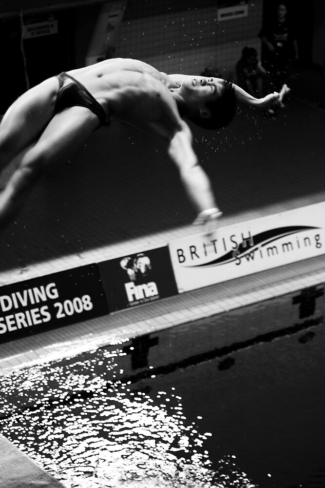 FINA World Diving Championships 2008 by Adrian Richardson