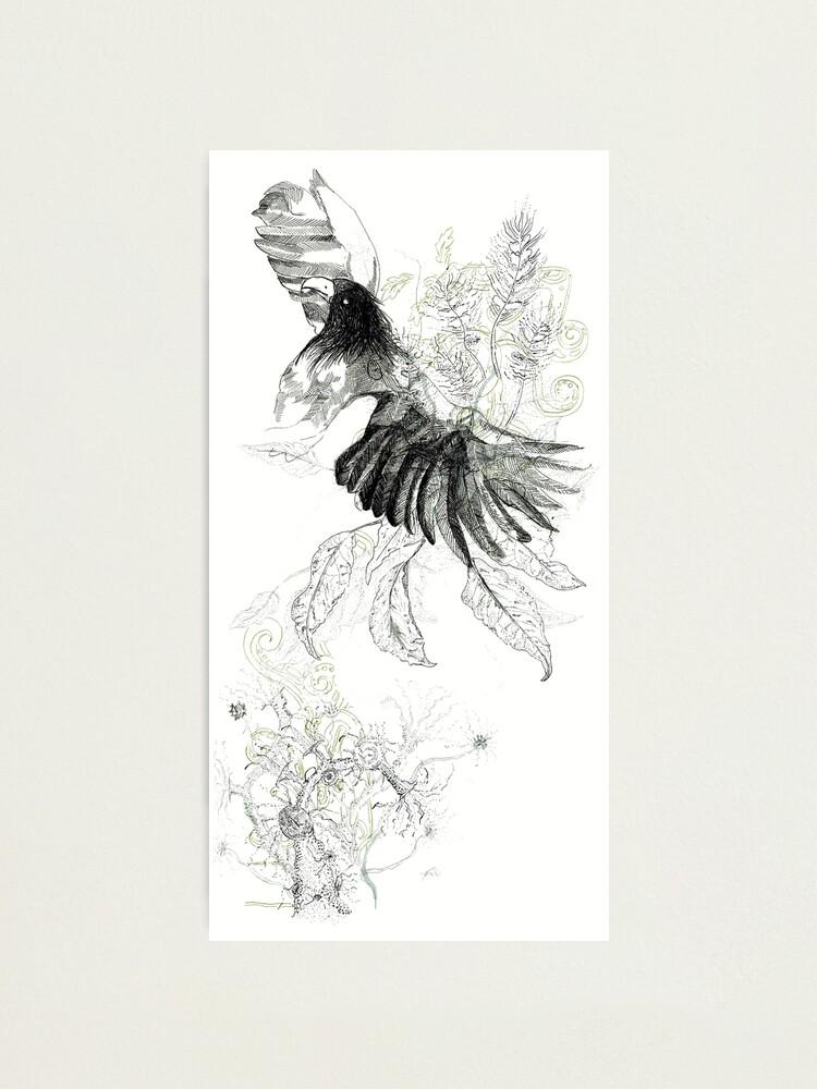 壮大 Flying Vulture Drawing - さのばりも