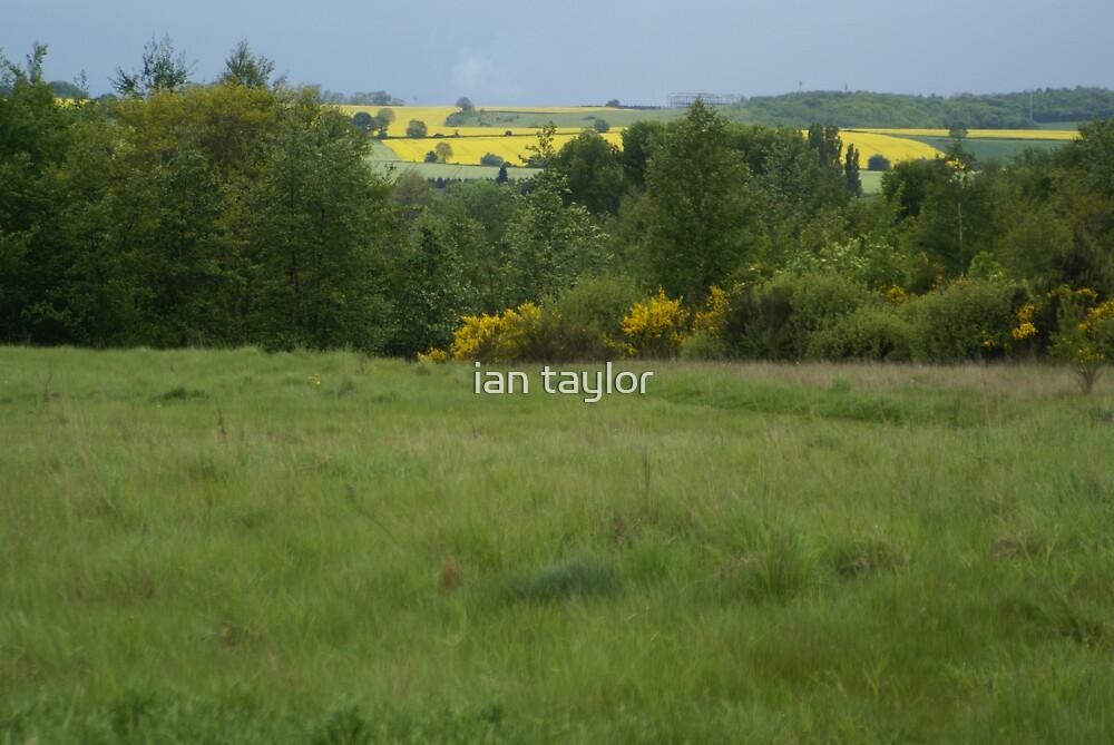 landscape1 by ian taylor