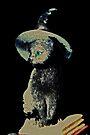 Katze in einem Hut von Evita