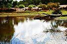 Am See von Evita