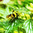 Honey Bee on Yellow Flowers Abstract Impressionism by pjwuebker