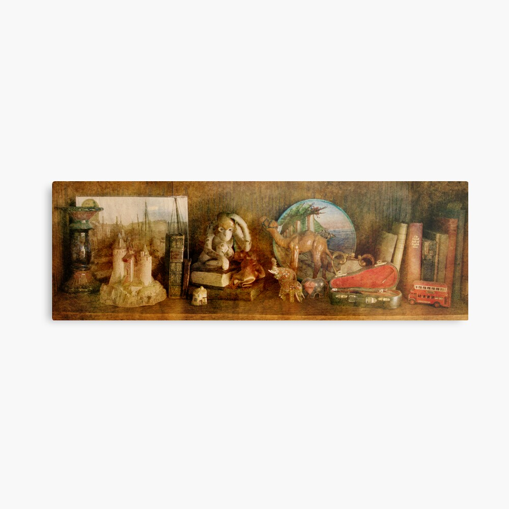 The Travelers Bookcase Metal Print