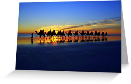 Cable Beach Camels by Bryan Cossart