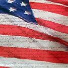 American Flag  by Fred Seghetti