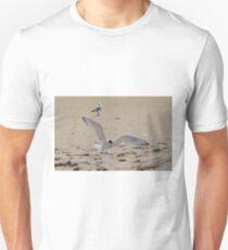 Greater Crested Tern (Thalasseus bergii) 2 T-Shirt