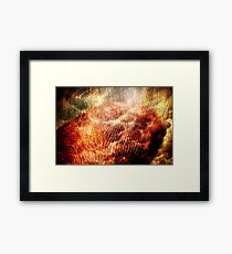 Born on Clouds and Burning Trees Framed Print