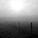 Misty Morn by Leah Highland