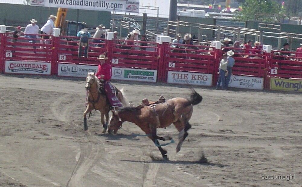 Cloverdale Rodeo Bucking Bronco by satsumagirl