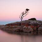 Binalong Sunset by Stephanie Johnson