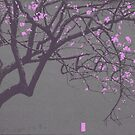 China Red - Pink Blossoms by peterrobinsonjr