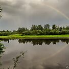 Morning on the Chena River  by John  Kapusta