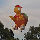 Turtle Balloon,Canberra Balloon Festival,Australia 2013 by muz2142