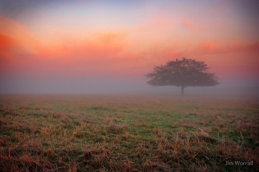 Pastel Dreams. by Jim Worrall
