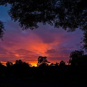 Sunrise in Kardinya, W.A. by Sandra