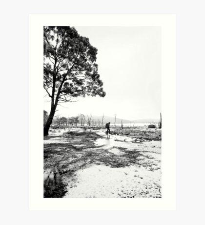 Bushwalking @ Lake King William Art Print