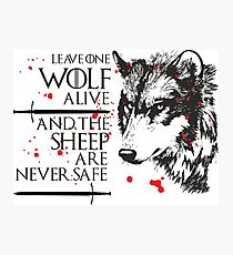 Wolf Alive Photographic Print