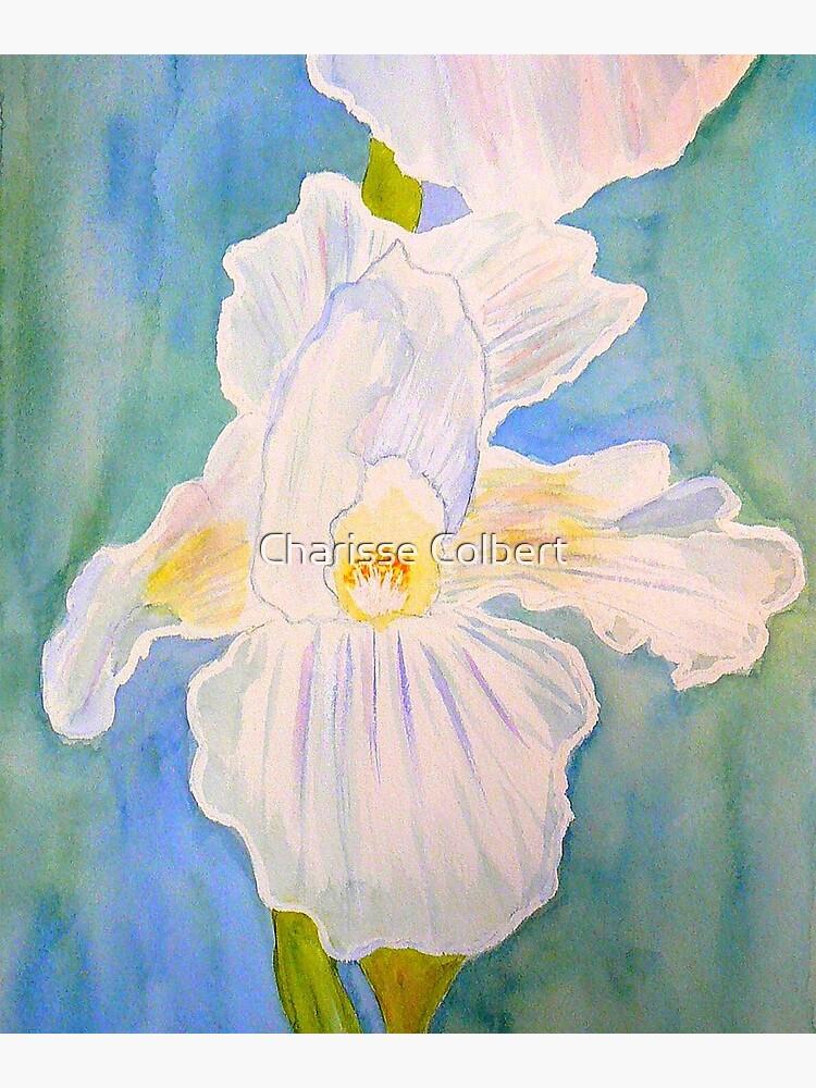 Immortality Iris by charissecolbert