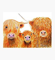 WE 3 COOS Photographic Print