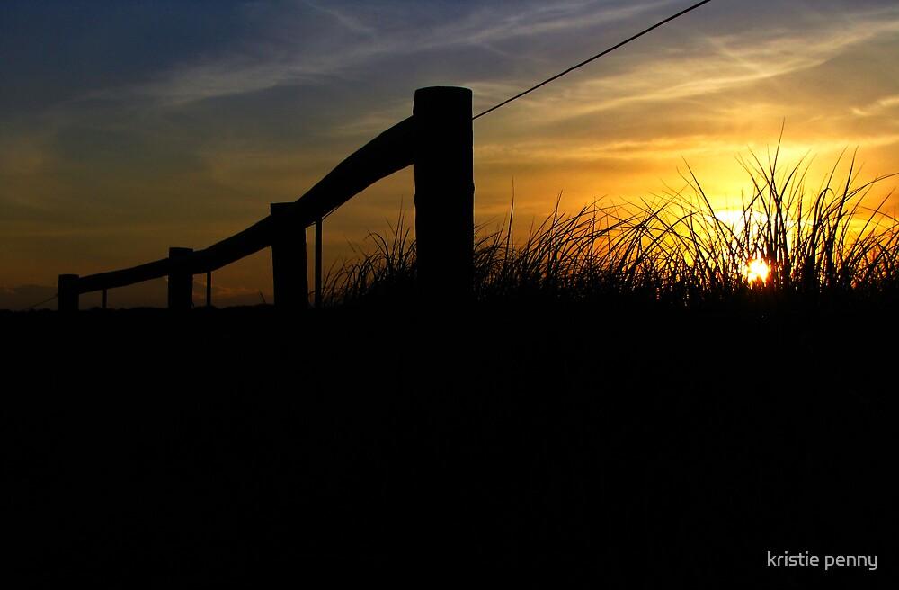 The Fenceline by kristie penny