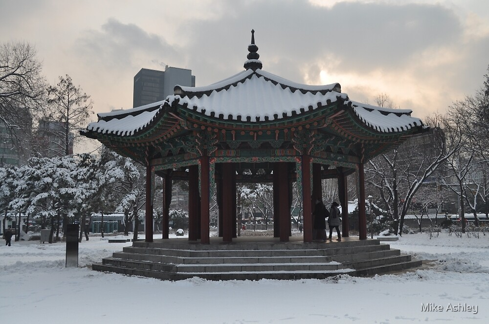 Tapgol Park in the Snow by Christian Eccleston